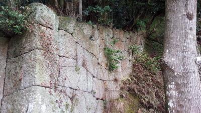 塚崎城 石垣
