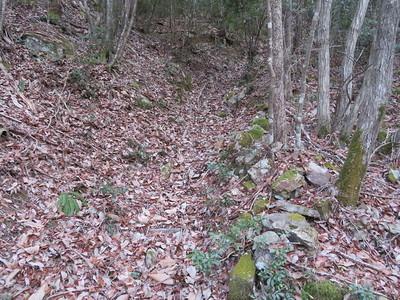 北の段側の登城道