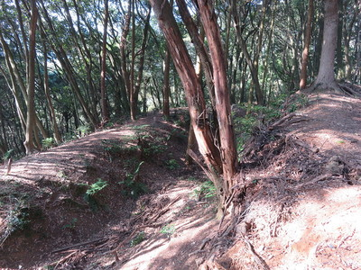 空堀(この上と下両方に堀があります)