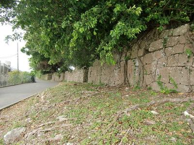 道路沿いの石垣