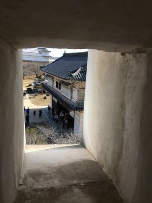 狭間から見た菱の門