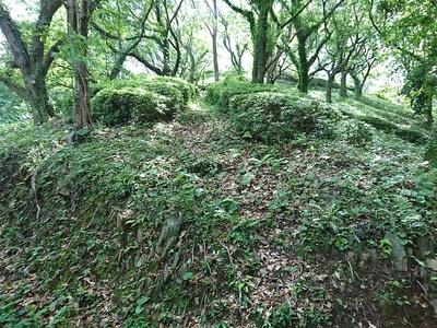 畝状竪堀群の一部