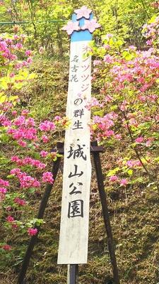 城山公園の看板