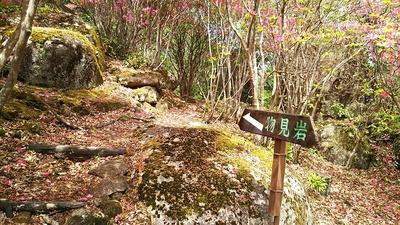 物見岩へ行く道