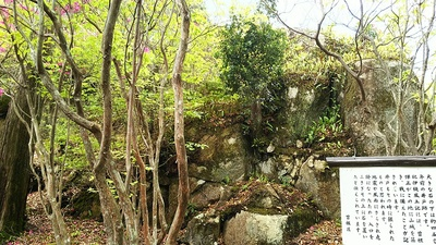 物見岩の石垣