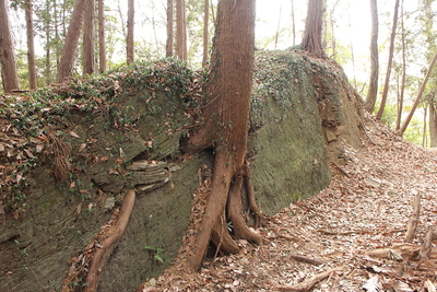 堀切の石(緑泥片岩)