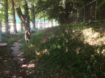 県柏高校との間の遊歩道