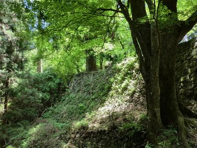 大手門から東側へ延びる石垣