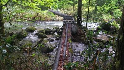 鉄塔整備道に掛かっている丸太橋 2