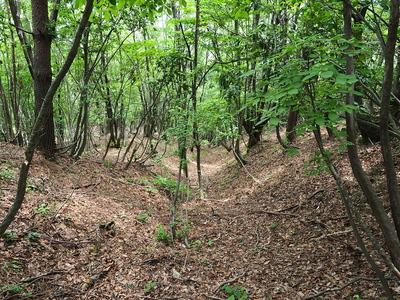 竪堀(三の丸南東)
