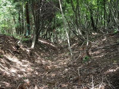 竪堀(北の曲輪東斜面)