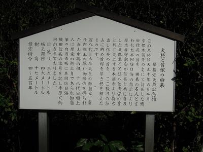 西山本門寺 大柊と首塚の由来