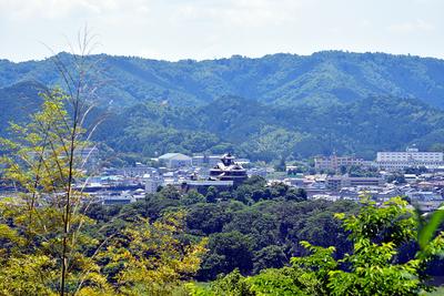 猪崎城跡から福知山城を望む