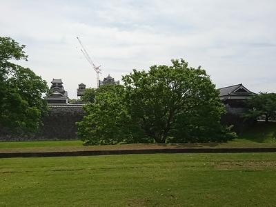 大小天守、宇土櫓と西大手門櫓