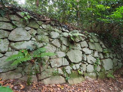 石垣◆登城路側