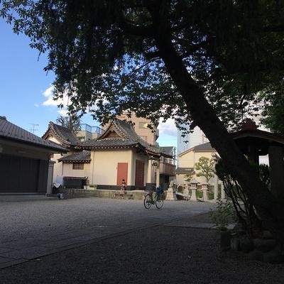 中曽根神社