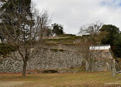 三の丸からの石垣群