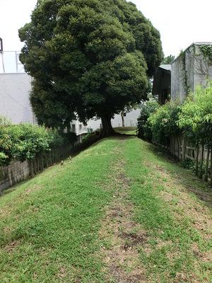 三の丸土塁(幸田口門)