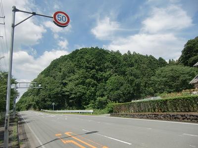 城址山全景(東側から)