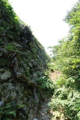 本丸石垣(東側②)