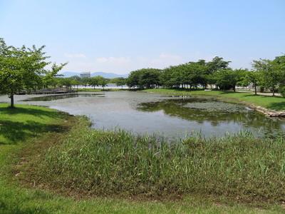 遊水池(二之丸)