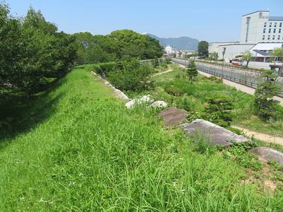二之丸東側石垣(潮見櫓台から)