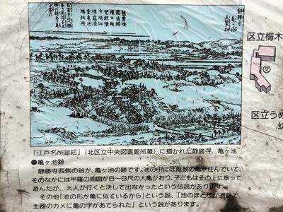 駅前案内板古地図