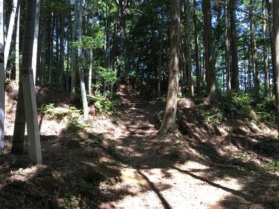 主郭への階段と二重の堀