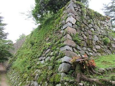 本丸下段石垣