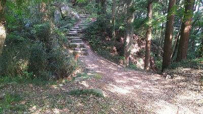 天守跡への石段と両脇の堀切