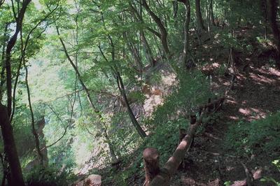 利根川の断崖絶壁を臨む