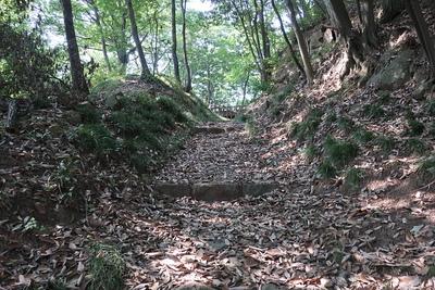 西矢倉台西堀切の通路