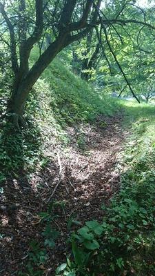 主郭を囲む堀