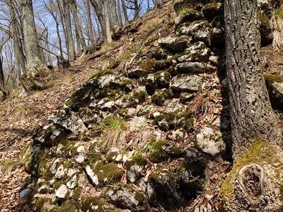 斜面に残る石垣