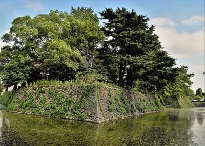 北の丸石垣と水濠