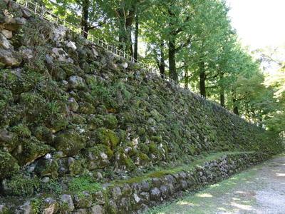 梅ノ段北側の石垣其の弐