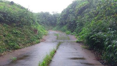 東山虎口への道