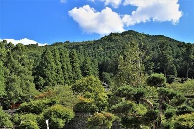有子山城全景(北側)