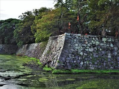 中堀と石垣