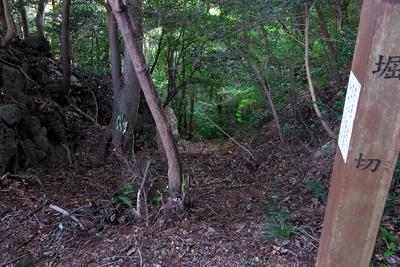 曲輪の間の堀切はそのまま竪堀となって山麓まで落ちている