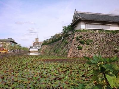 二の丸の堀と石垣