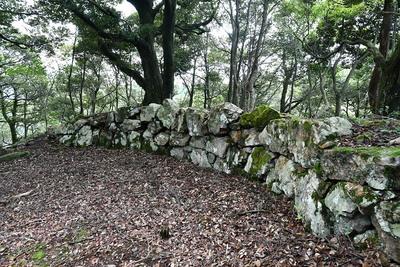 本丸上の土塁石垣