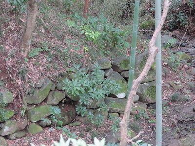 北側の堀の石積