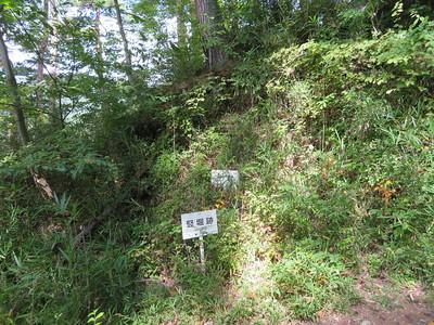 土塁と竪堀