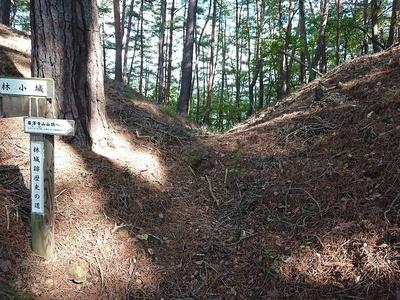 林小城の堀切