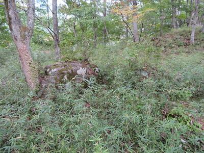 主郭部の庭園の庭石?