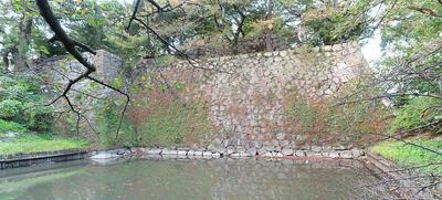 東南高石垣と水堀