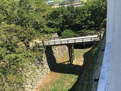 西の丸続櫓から見た大堀切