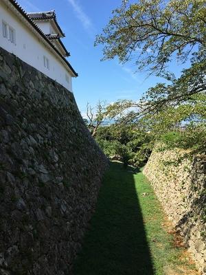 西の丸三重櫓と大堀切