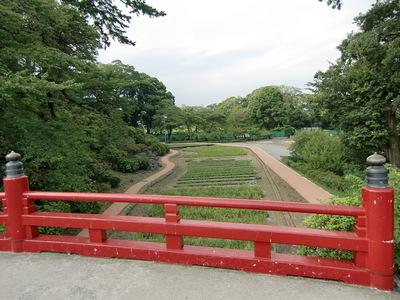 本丸東堀跡